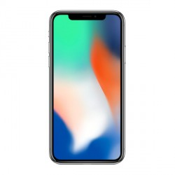Module Ecran - iPhone X